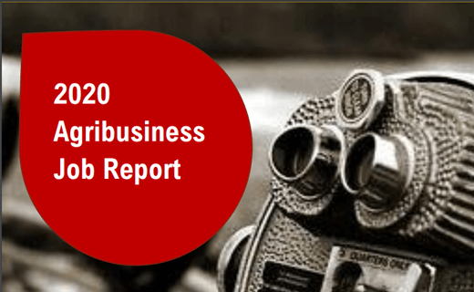 Looking Back & Making Our Way Forward: 2020 Agribusiness Job Reports