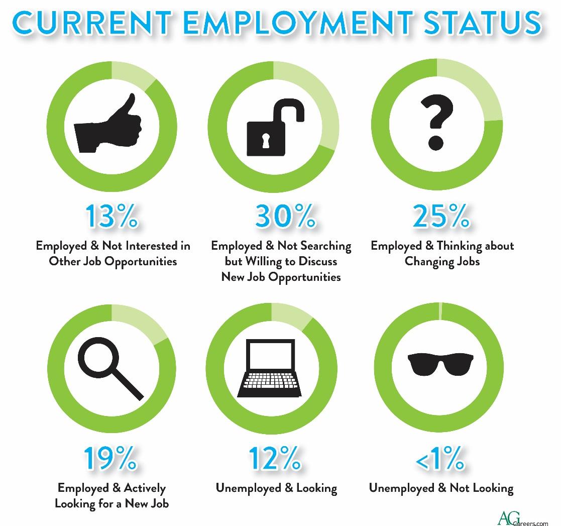 Current Employement Status