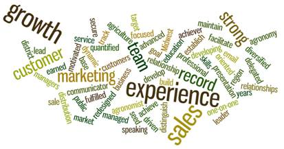 Wordle™ Your Job Search