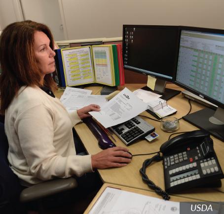 accountant career profile agcareers com
