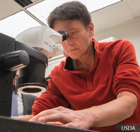 Bioinformatics Scientist   Career Profile   AgCareers.com