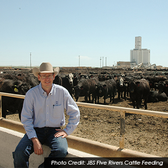 Feedlot Manager | Career Profile | AgCareers.com