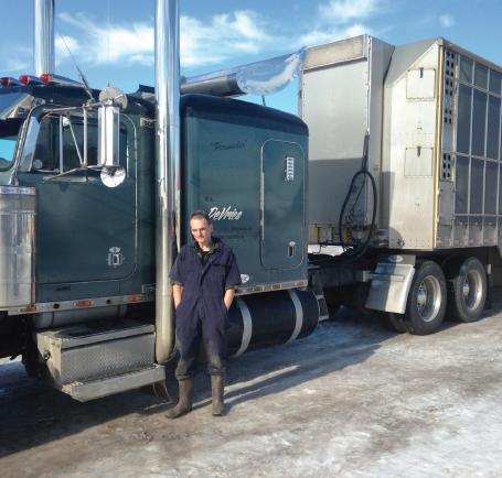 livestock hauler career profile agcareers com