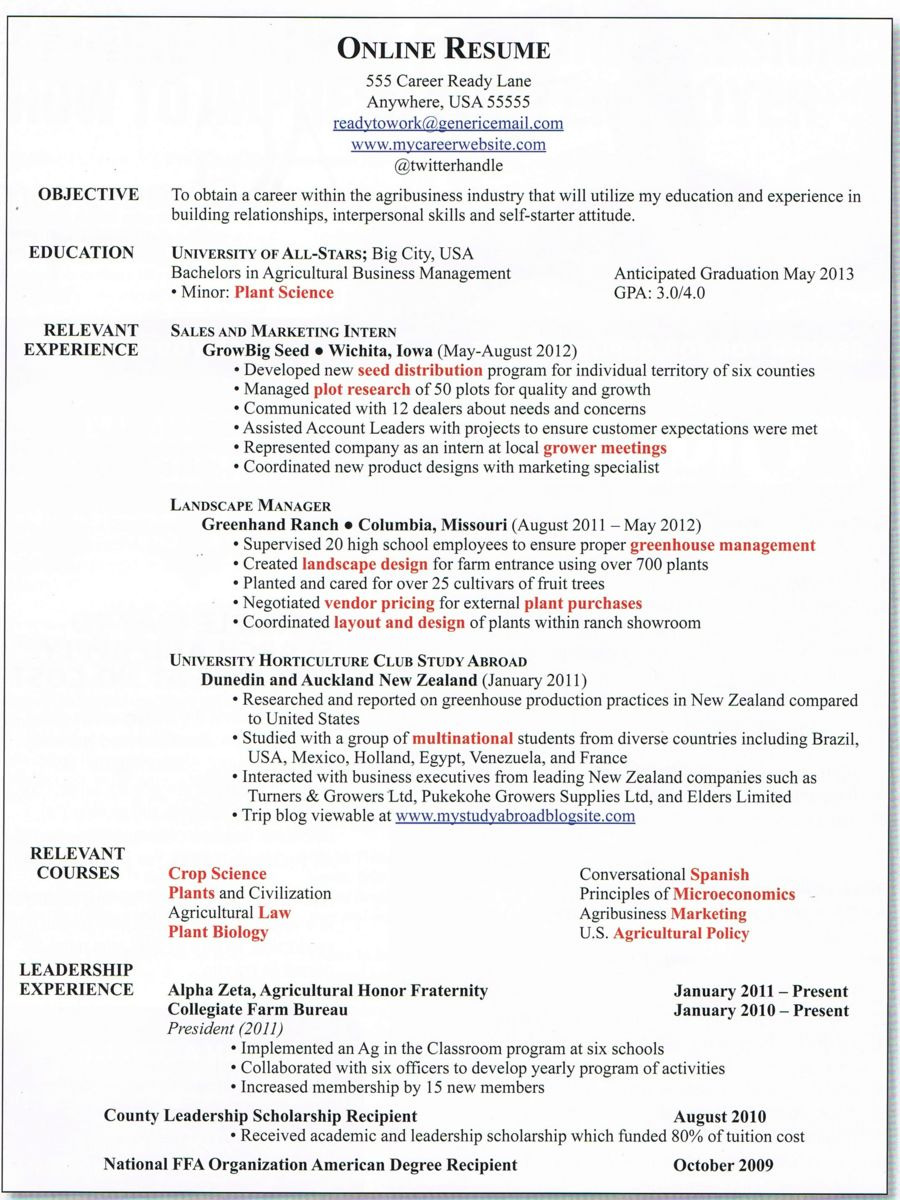 Developing a great online resume agcareerscom for Make job resume online free